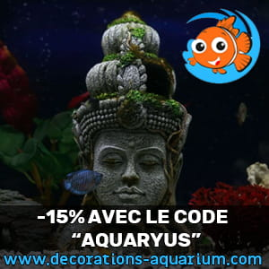 Promotion sur Decorations-Aquarium.com